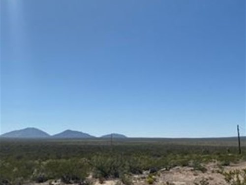 60 Acres, Level Land, Only $328/Mo : Sierra Blanca : Hudspeth County : Texas