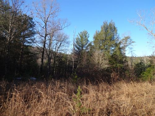 15.05 Acres W, Village Creek Rd : Mountain Rest : Oconee County : South Carolina