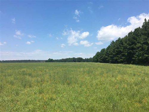 10 Acre Building Tracts For You DR : Beebe : White County : Arkansas