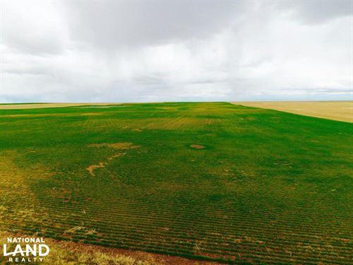 Dry Land Farm Ground For Sale - Kit : Seibert : Kit Carson County : Colorado