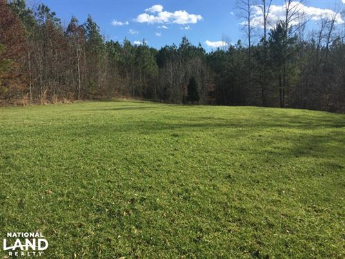 Hwy 247 Hunting Opportunity/ Gravel : Red Bay : Franklin County : Alabama