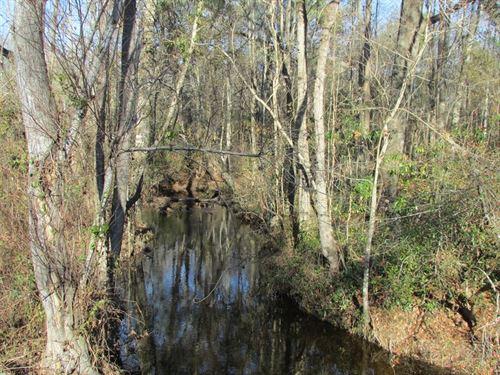 Foxworth Mill Road Tract : Sumter : South Carolina