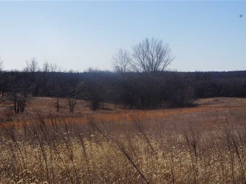 78 Acres of Hunting, Crp on Blackt : Gallatin : Daviess County : Missouri
