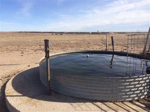 1248 Acre Cattle Ranch Lakin : Lakin : Kearny County : Kansas
