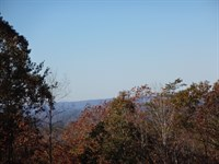 80.95 Acres Woodall Mountain Ro : Pickens : Pickens County : South Carolina