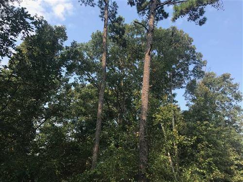 160 Acres of Recreational Timberla : Clinton : Van Buren County : Arkansas