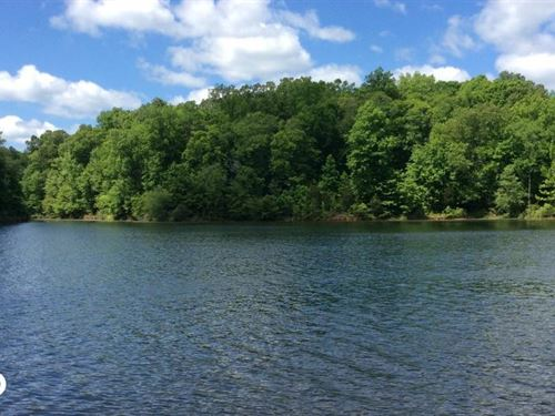 Lake Russell Frontage Property : Lowndesville : Abbeville County : South Carolina