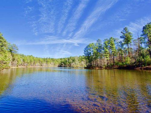 111 Acre Sanctuary With Pond In Ben : Benton : Bossier Parish : Louisiana