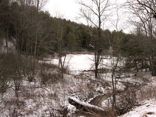 Great Tract Of Land In Mountains : Troutdale : Grayson County : Virginia