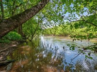 365 Acres On The Duck River : Columbia : Maury County : Tennessee