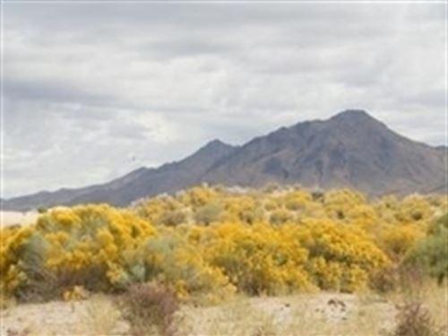 Nevada, Humboldt County : Winnemucca : Humboldt County : Nevada