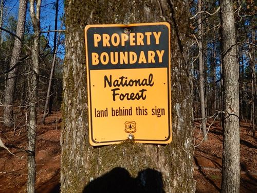 National Forest Access : Greensboro : Greene County : Georgia