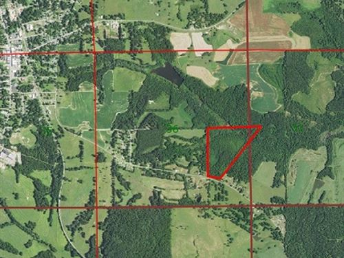 42 Ac Of Hunting Land In Pike Co : Tennille : Pike County : Alabama