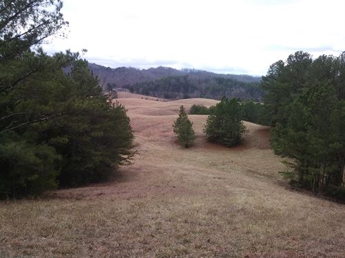Fsbo 35 Acres Sevier County Tn : Sevierville : Sevier County : Tennessee