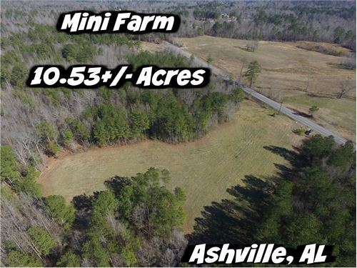 Mini Farm Opportunity : Ashville : Saint Clair County : Alabama