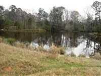 58 Acre Ranch And Hunting Property : 766 : Cherokee County : Texas