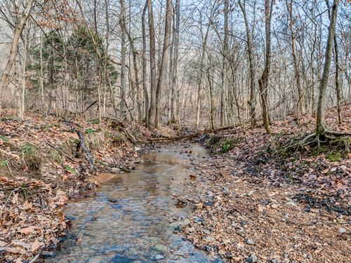 Over 16 Acres With Creek : Primm Springs : Hickman County : Tennessee