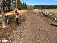 Reid 59.6 Ac. Mini Ranch/Farm With : Terry : Hinds County : Mississippi