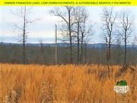 9 Acres, National Forest Access : Thornfield : Ozark County : Missouri