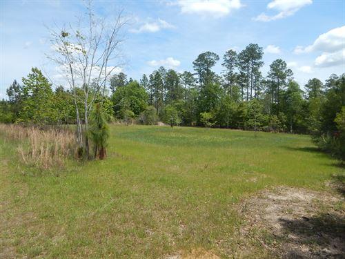Claude D. Kelley Tract : Huxford : Escambia County : Alabama