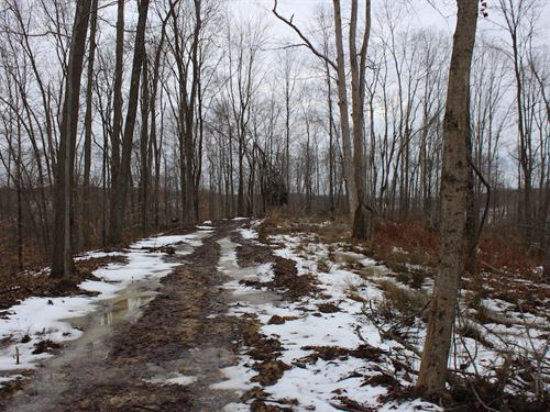 Mann Rd - 89 Acres : Logan : Hocking County : Ohio