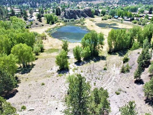 Lake City Acreage : Lake City : Hinsdale County : Colorado