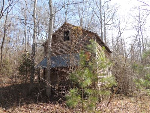 10.32 Ac On Hall Mills Rd : Greenville : Meriwether County : Georgia