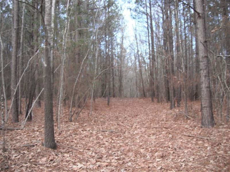 57 Acres, Chester County, Sc : Richburg : Chester County : South Carolina