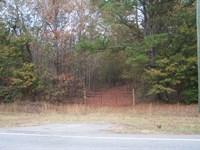 Wooded Acreage : Louisville : Jefferson County : Georgia