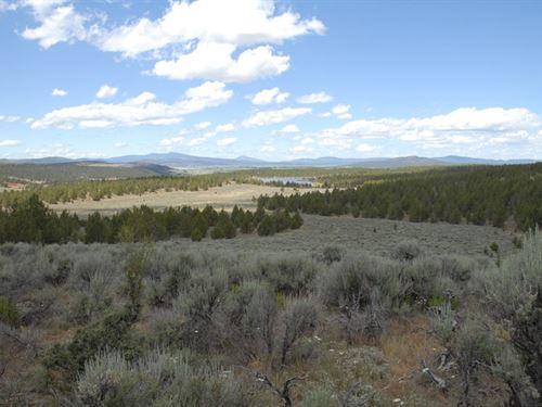 Great Philpott Property : Bonanza : Klamath County : Oregon