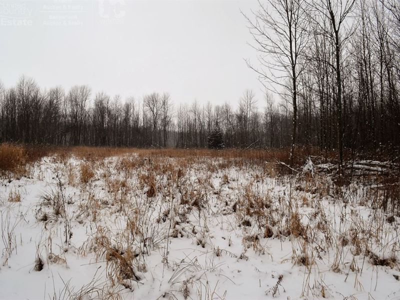 Wooded Acreage : Cleveland : Manitowoc County : Wisconsin