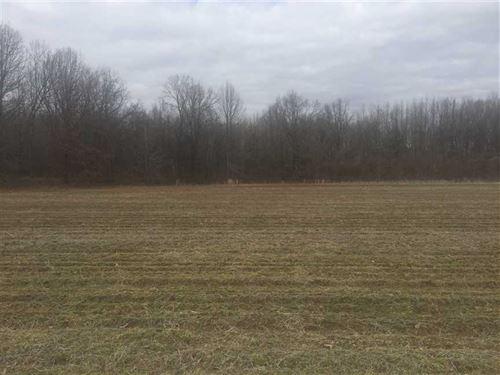 38.99 Acres at Bay Village : Bay Village : Poinsett County : Arkansas
