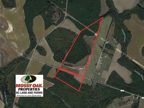 70 Acres of Farm And Timber Land : Lumber Bridge : Hoke County : North Carolina