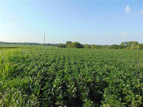 Cass County 130 : Belton : Cass County : Missouri