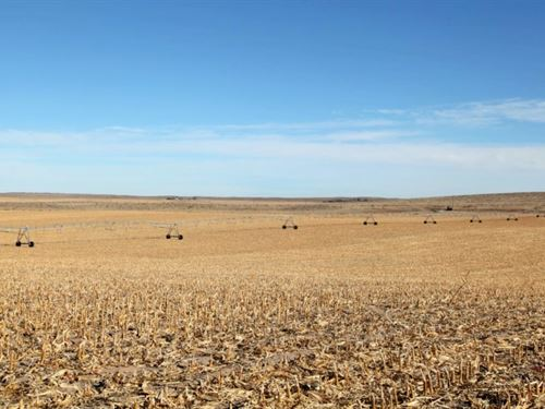 Northeast Yuma County Pivot Irrigat : Wray : Yuma County : Colorado