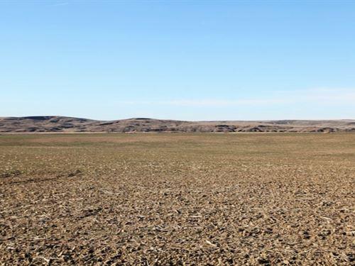 Arikaree River Valley Property Auct : Wray : Yuma County : Colorado