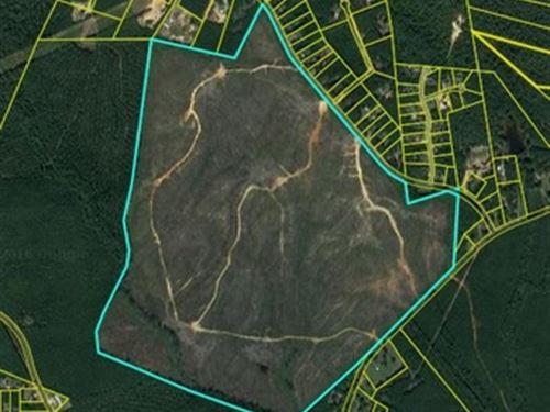 315.54 Acres - Richland County, Sc : Blythewood : Richland County : South Carolina