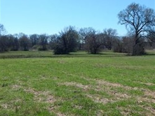 Recreational And Pasture Acreage : Hallsville : Harrison County : Texas