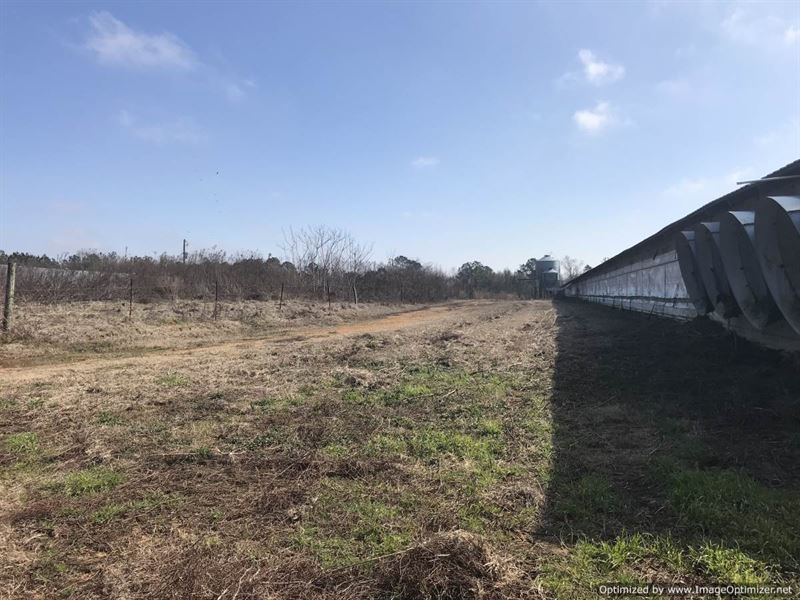 3 House Poultry Farm : Silver Creek : Lawrence County : Mississippi