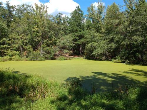 Seller Says Make Offer : Ridgeway : Fairfield County : South Carolina