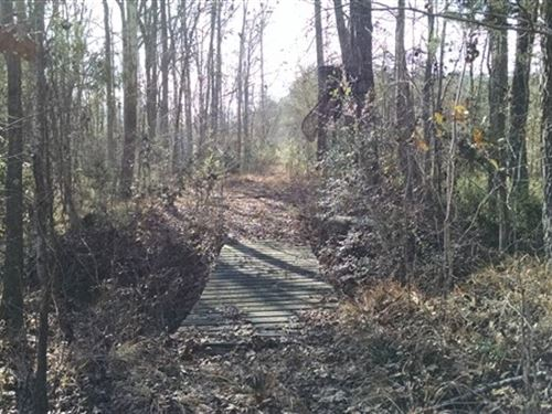 51.02 Acres, Fairfield County, Sc : Blair : Fairfield County : South Carolina