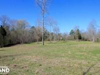 Brush Creek Hunting Tract : Sulligent : Lamar County : Alabama