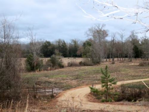 41 Acres In Forrest County, Hatties : Hattiesburg : Forrest County : Mississippi
