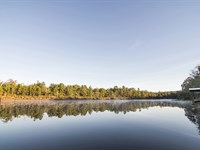 Plantation With Year Round Hunting : Bainbridge : Decatur County : Georgia