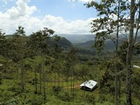 9.39 Ac Cattle Farm, Barn, Springs : Jabillos De Turrialba : Costa Rica