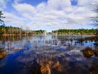 Prime South Georgia Location : Donalsonville : Seminole County : Georgia