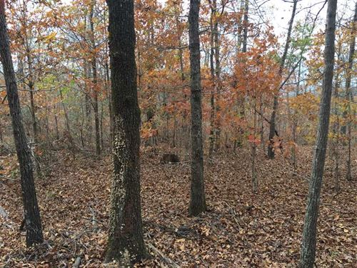 Hunting Land Includes 1953 Ford Ju : Ozark Acres : Sharp County : Arkansas