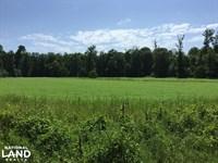 Big Black River Large Acreage Hunti : Canton : Madison County : Mississippi