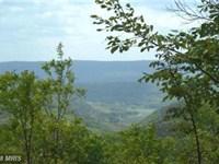 Bluebird Trail : Springfield : Hampshire County : West Virginia