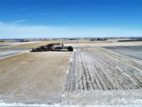 62.3+/- Acres Of Prime Cropland : Bruce : Brookings County : South Dakota